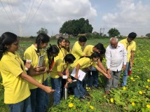 Educational Visit to a Farm {Social Science (Geography) - Chapter - Agriculture}